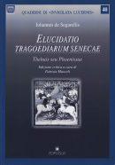 Quaderni-Invigilata-Lucernis-(40)